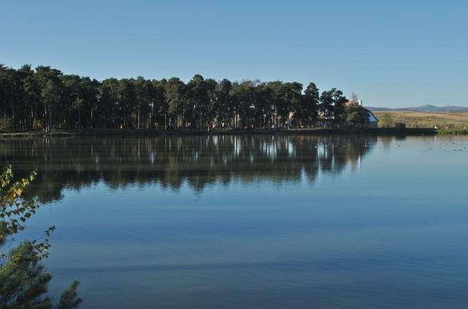Mestecanisul si Lacul Reci